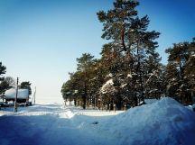Берег Байкала в Горячинске