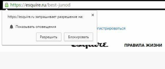 """Запрос на показ оповещений на сайте """"Эсквайра"""""""