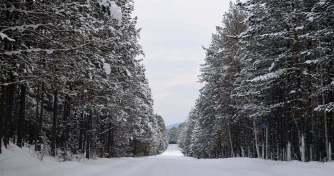 Баргузинский район, по пути из Усть-Баргузина в Баргузин