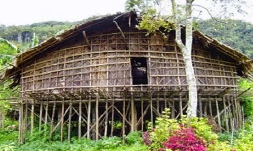 macam macam rumah adat Papua Barat