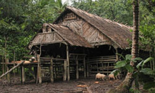 fungsi rumah adat sumatera barat