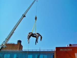 The Master Riggers at Budco rigged bronze horse statues into an art gallery through a skylight and set them in their final position.
