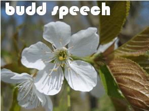budspeech