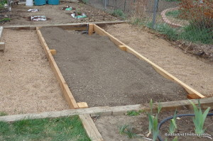 Strawberry and blueberry beds