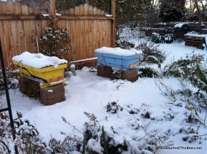 The bees are nestled, all snug in their combs.