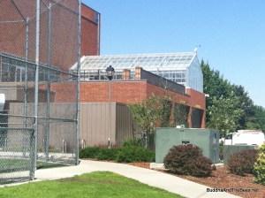 Beehives and greenhouse - Gonzaga University