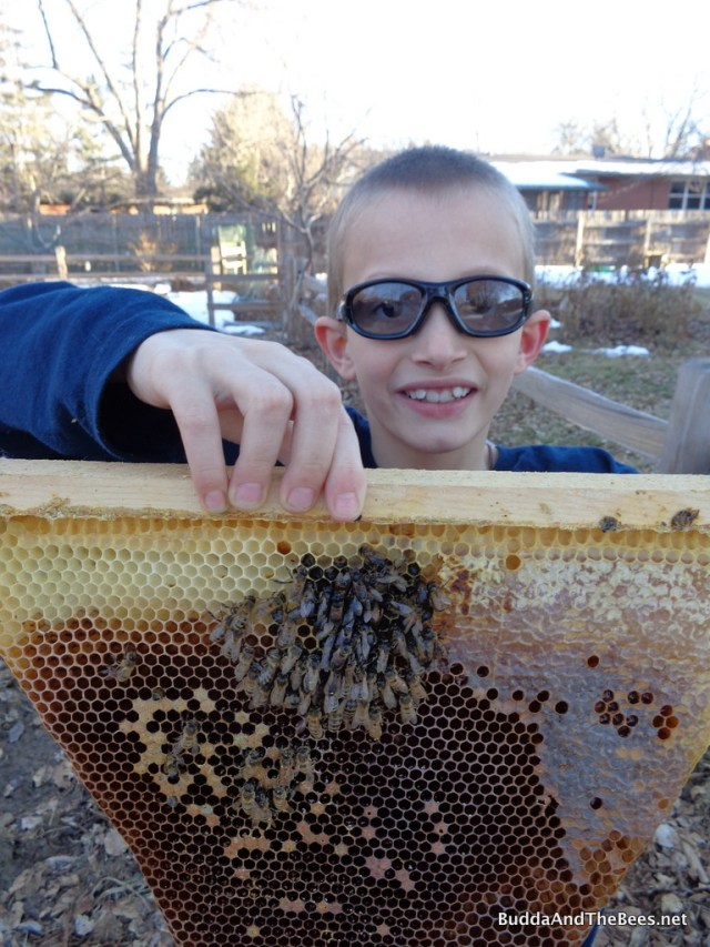 Duncan holding one of the bars with dead bees