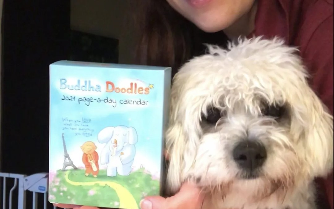 Watch Odie and I unbox the new Page-A-Day Calendar!