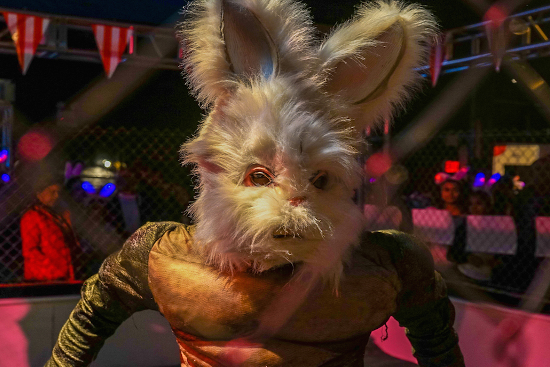 Full-Bunny-Contact-cage-match-photo-insult-peeps-nyc-easter-sunday-carnival-insane-costumes-creepy-egg-hunt-buddha-drinks-fanta-04956