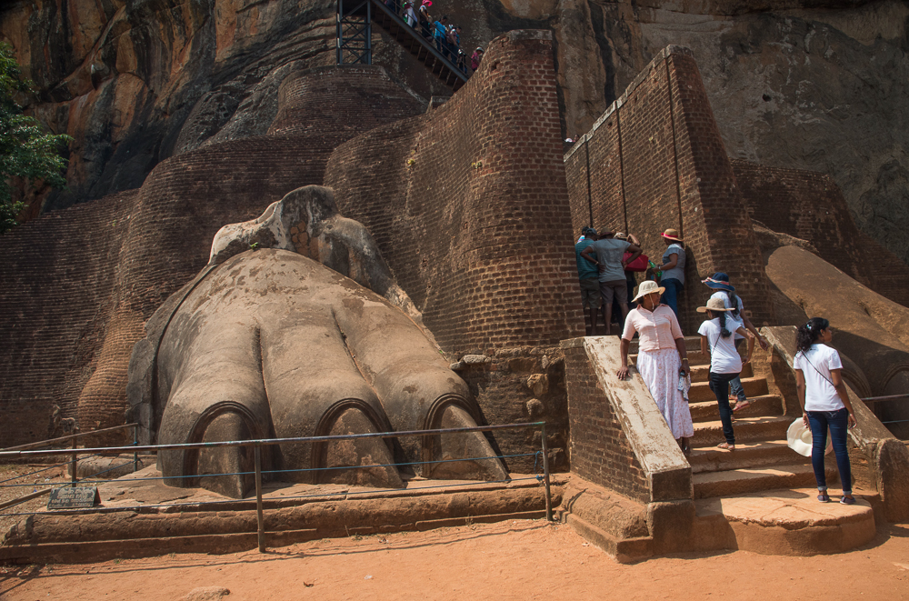 sri-lanka-lion-rock-claws-stairs-sigiriya-monkey-beaches-egg-hoppers-amangalle-amanwalla-tangalle-galle-visa-galle-photography-buddha-drinks-fanta-jenny-adams-1-of-1