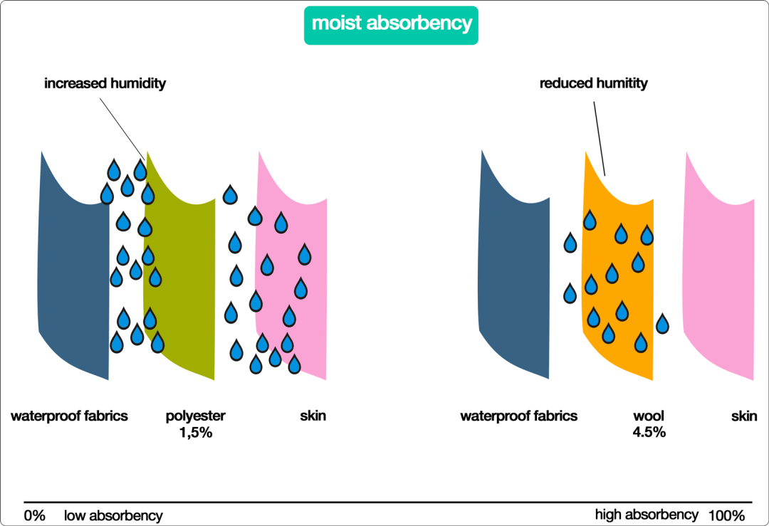 most-absorbency