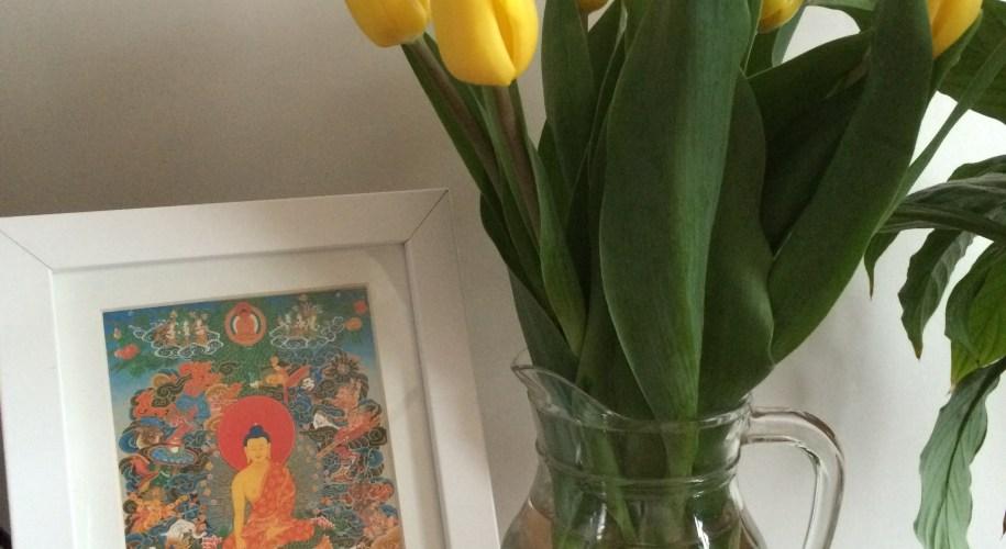 self isolation buddhist practice home retreat