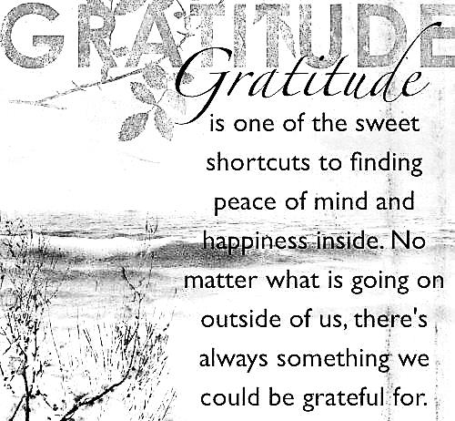 gratitude for website