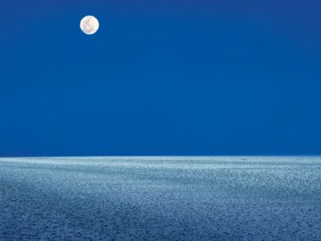 5 Reasons Why Rann of Kutch Should be your Next Holiday Destination