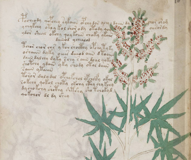 Voynich Manuscript Top 5 Mysteries of the World