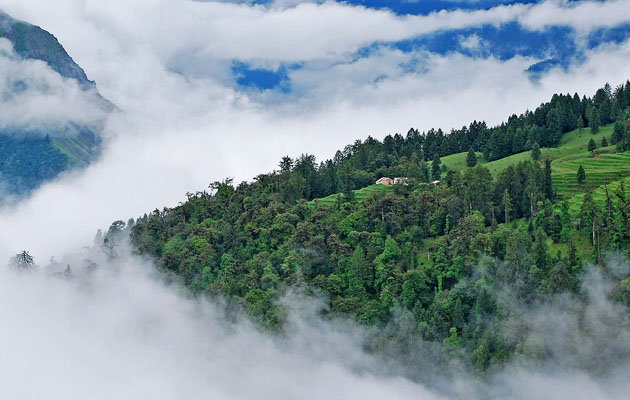 Auli - 10 Best Indian Places To Visit During Winter