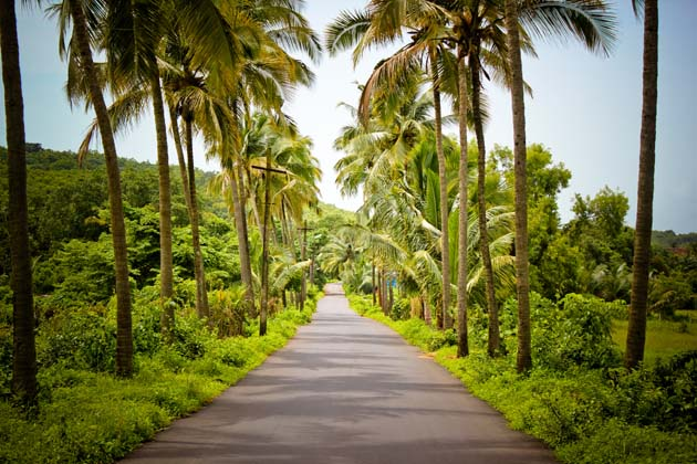 Reaching to Goa - A Guide to Your First Goan Adventures