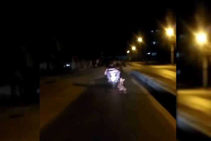 Two youngsters tied a Dog with vehicle and dragged it for 2 KM!
