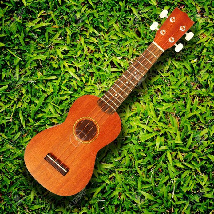 ukulele on green grass texture Stock Photo ukulele