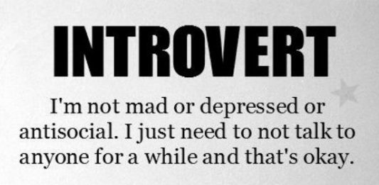 the-nerdy-introvert