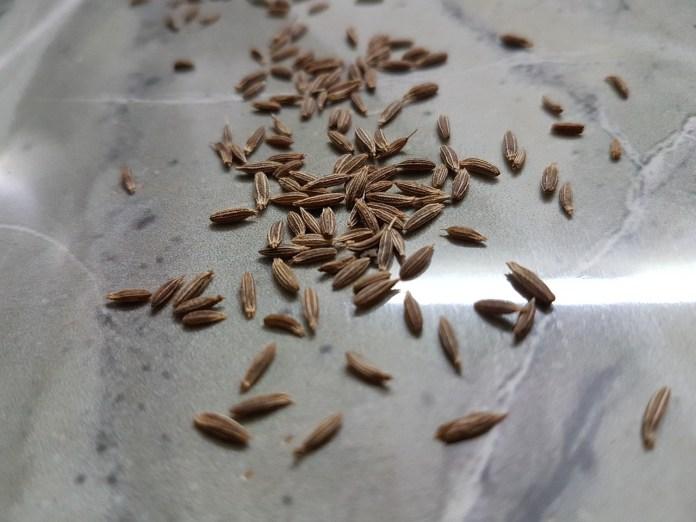 Cumin seeds for menstrual cramps