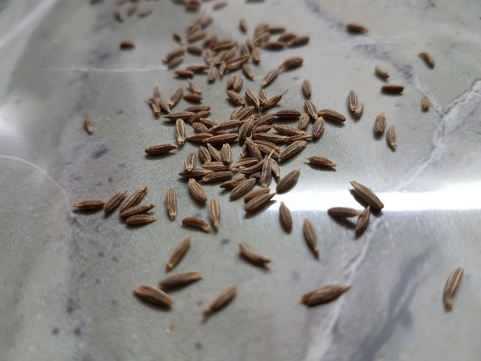 Cumin seeds for menstrual cramps