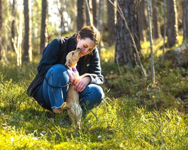 Varför ta hjälp av en hundpsykolog?