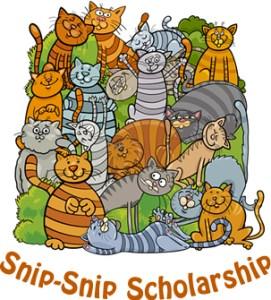 snipsnip scholarship