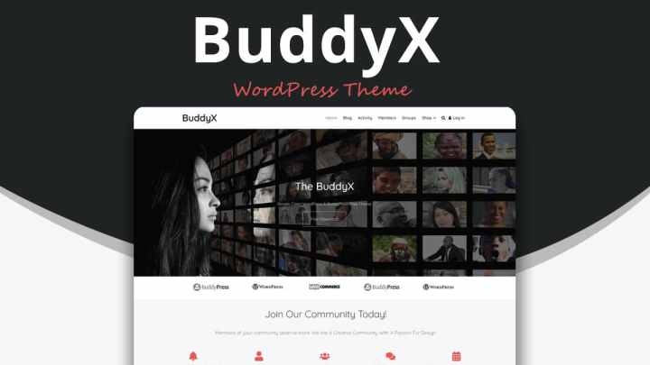 WordPress Social Network Themes