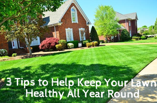3 Tips to Help Keep Your Lawn Healthy All Year Round #Sponsored