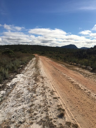 The road running through the newly created reserve