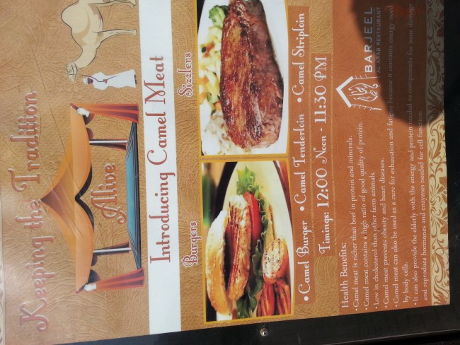 POSTER OF THE CAMEL MEAT DISHES