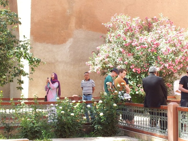 THE GARDEN AT THE SAADIAN TOMBS