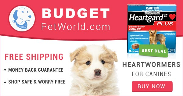 Heartgard Plus is a popular monthly treatment to control heartworm infection and provides total protection against heartworm disease to dogs.