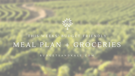 Food Freedom Meal Plan Budget Friendly