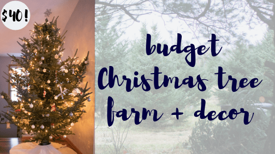 Our Family Christmas Tree 2018: Budget Tree Farm + Decor