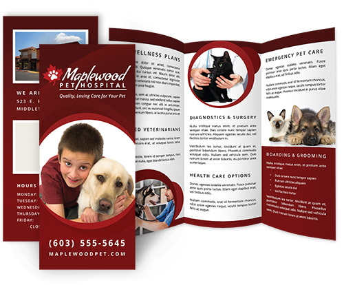 Veterinary Hospital Brochures Veterinarian Brochures And Print