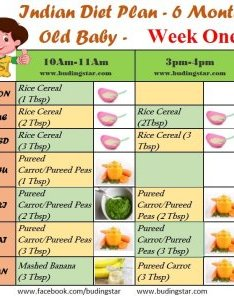Indian diet plan for months old baby also budding star rh budingstar