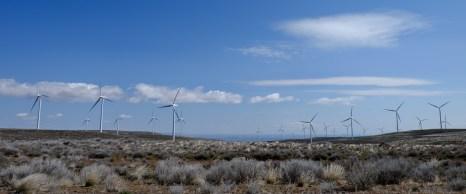 Wild Horse Windfarm