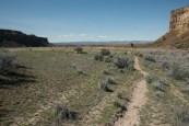 Ancient Lake Trail