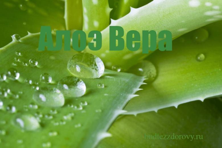 //budtezzdorovy.ru/вера