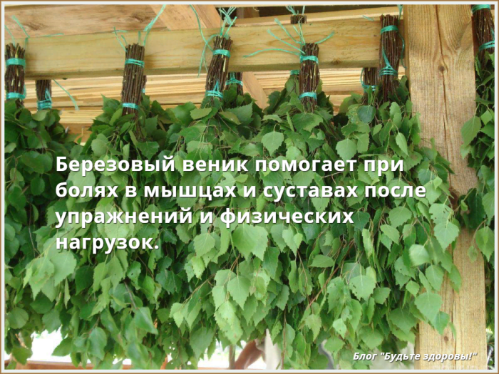 //budtezzdorovy.ru польза бани