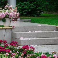 Schody z betonu - pomysł na zewnętrzny blask przy domu