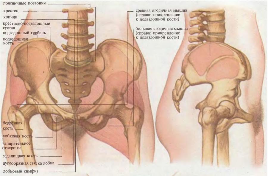 este tratată osteocondroza șoldului