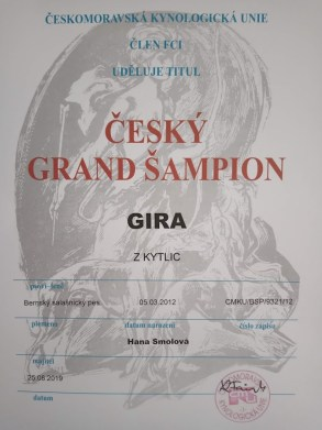 Gira Grand šampion