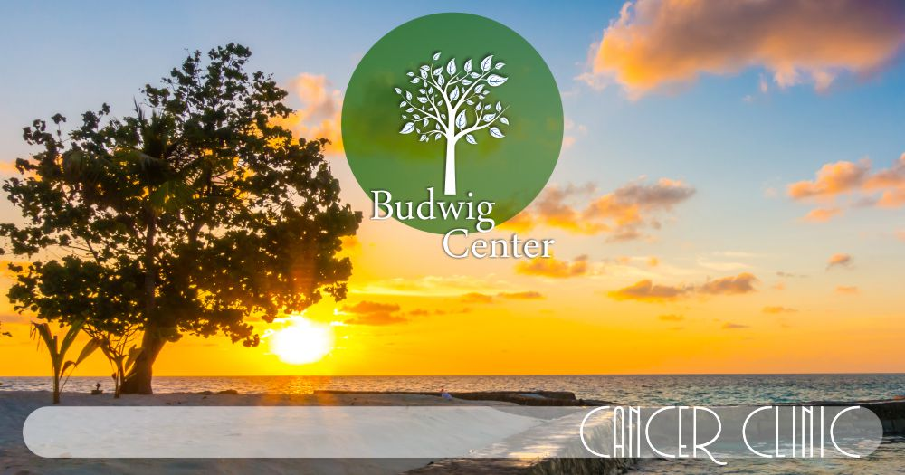 The Budwig Center Advances in Complementary Natural Treatments for Cancer