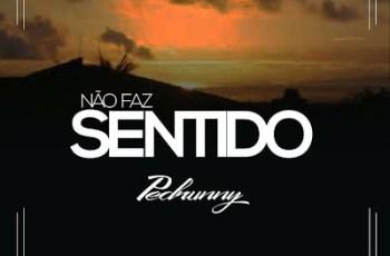 Pedrunny - Não Faz Sentido (Zouk) 2016