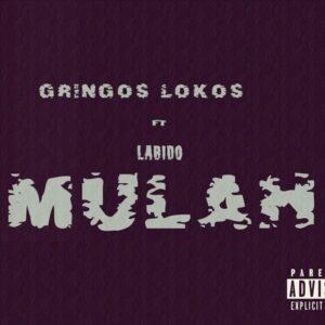 Gringos Lokos - Mulah Feat. Labido (2016)