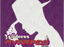 Widness - Avariado (Single) 2017