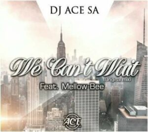 DJ Ace SA feat. Mellow Bee - We Can't Wait (Afro House) 2017
